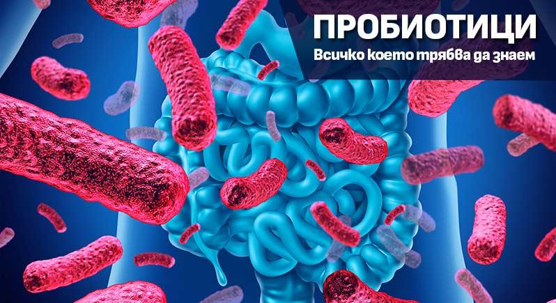 Пробиотици - какво трябва да знаем за тях